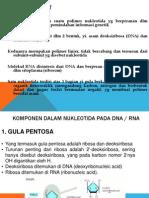 Asam Nukleat Dan Sintesis Protein (1)