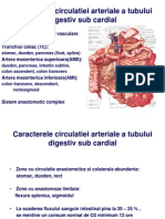 Semio Digestiv 2009 Partea a IIa