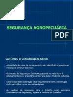 SEG. AGR. PPT 2008