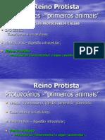 protozoariosapresentaocleitonreviso-100612155812-phpapp02