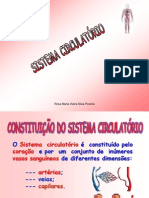 Sistemacirculatrio Powerpoint 07080910 Cpia 100401182628 Phpapp01