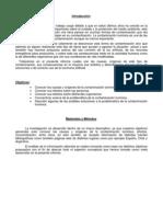 Contaminacion luminica Monografia
