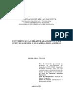 CONTRIBUIÇÃO AO DEBATE PARADIGMÁTICO DA QUESTÃO AGRÁRIA E DO CAPITALISMO AGRÁRIO