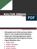 NEW KULTUR ORGAN.ppt