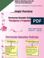 estrgenosyprogesteronahektorvalkyrie-130414153745-phpapp01