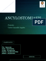ancylostomiasis-130523234611-phpapp01manuela2