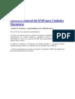 Directiva General Del SNIP Para Unidades Ejecutoras