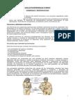 HORMONAS+Y+REPRODUCCIÓN+(definitiva)