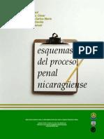 ESQUEMAS DE DERECHO PENAL NICARAGÜENSE Copy