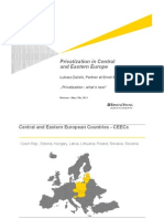 Privatization in Central and Eastern Europe