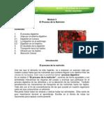 Imprimible Modulo 3 Nutricion