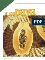 Papaya,Antiossidante Naturale