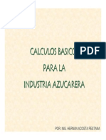 Calculos Basicos Industria Azucarera