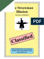 95170211-Straw-Man