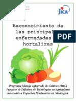 Manual de Enfermedades de Hortalizas