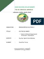 Informe Del Cultivo de Arroz-Inia - Pilco