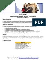 Programa Experto en Modelos de Gestion Empresarial