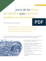 111_La importancia de los flujos de efectivo.pdf