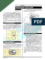 02-citologia-organização celular