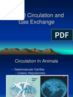 Animal Circulation and Respiration