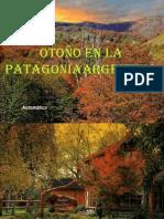 Argentina - Toamna in Patagonia 8.9