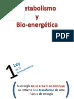 C02 Metabolismo y bioenergética