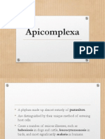 Apicomplexa