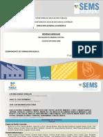 Física II - Programa SEMS