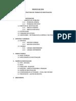 Estructura Del Trabajo de Investigacion