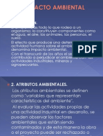IMPACTO AMBIENTAL_diapositivas
