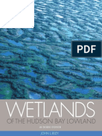 Wetlands of Hudson Bay