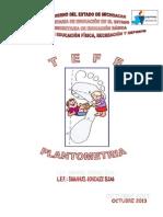 Proyecto TEFE