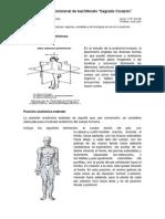 Anatomiah.jpg