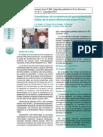 Caracterizacion preliminar de la resistencia de germoplasma de arroz al añublo de la vaina