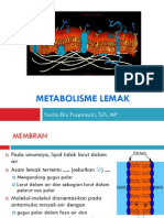 Metabolisme-lemak_0