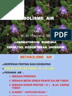 metabolismeair-dr-tien-121001073635-phpapp01.ppt