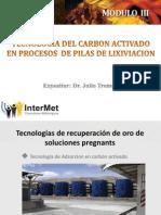 1. Tecnologia de Recuperacion de Oro Con Carbon Activado - Parte 1