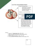 Lap Anatomi Fraiz