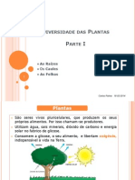 Diversidade das Plantas.ppt