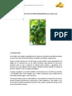 ELABORACIÓN DE GELEE DE PAPAYA AREQUIPEÑA