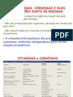 4coenzimas1-110509095419-phpapp01