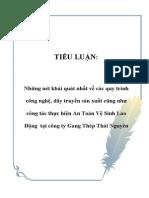 Tieu luan ATLD Gang thep TN.pdf