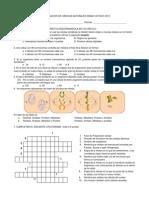 Evaluacion de Ciencias Naturales Grado Octavo2013 Mitosis Meiosis