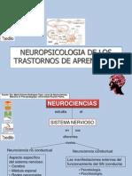 1 Neuropsicologia de Los Trastornos Del Aprendizaje