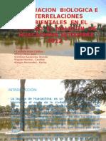 Evaluacion Biologica e Interrelaciones Ambientales en El Habitad El Malecon de Huacachina - Set 2012