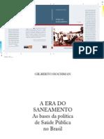 Gilberto Hockman- A Era Do Saneamento
