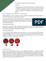 Etiqueta Roja Hematopoyesis