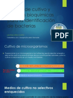 Medios de cultivo y pruebas bioquímicas para la identificación de bacterias-LUIS RAUL RIOS MADRID