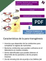 Paratransgenesis 2013