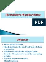 Oxidative Phosphorylation Ma 2011-3